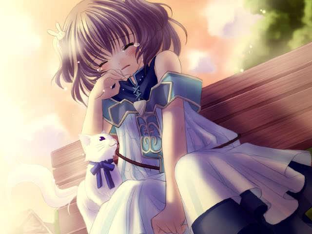 Ảnh 3: Cô gái bé nhỏ với nhiều tâm sự chỉ có thể khóc 1 mình cùng chú mèo thân yêu của mình